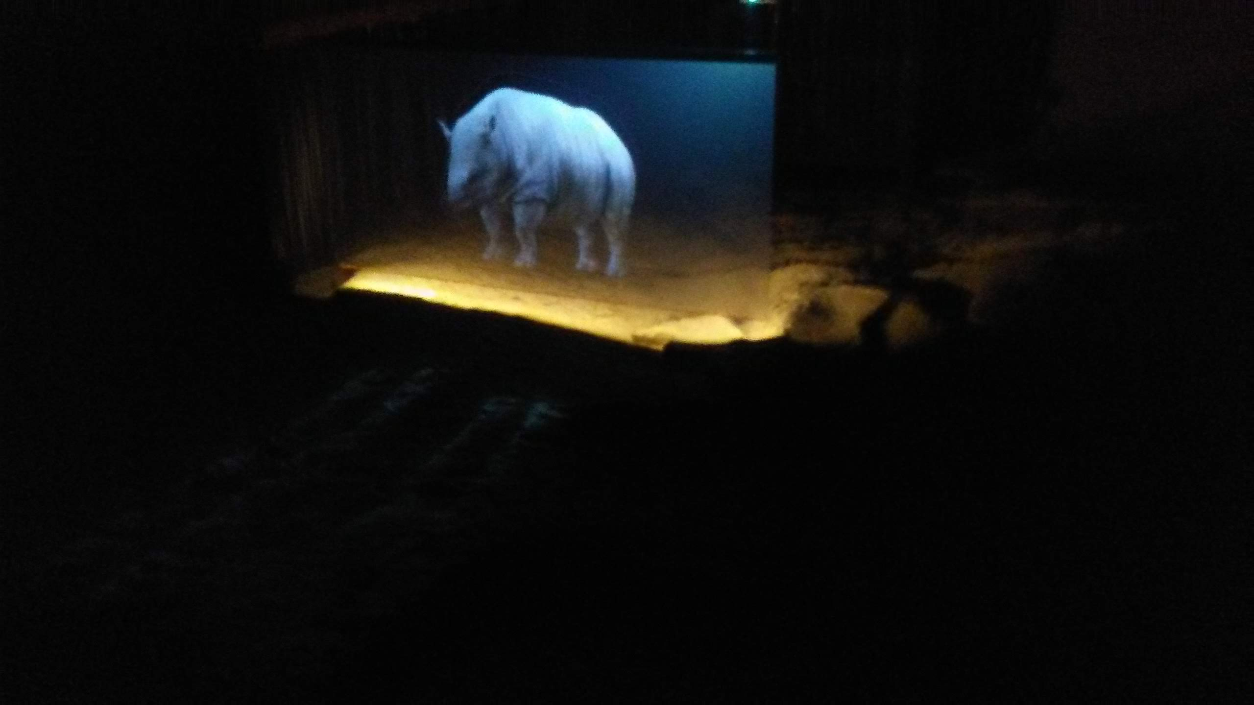 Ipolytarnóci Ipolytarnóci Ősmaradványok Természetvédelmi Terület látogatásaŐsmaradványok Természetvédelmi Terület látogatása