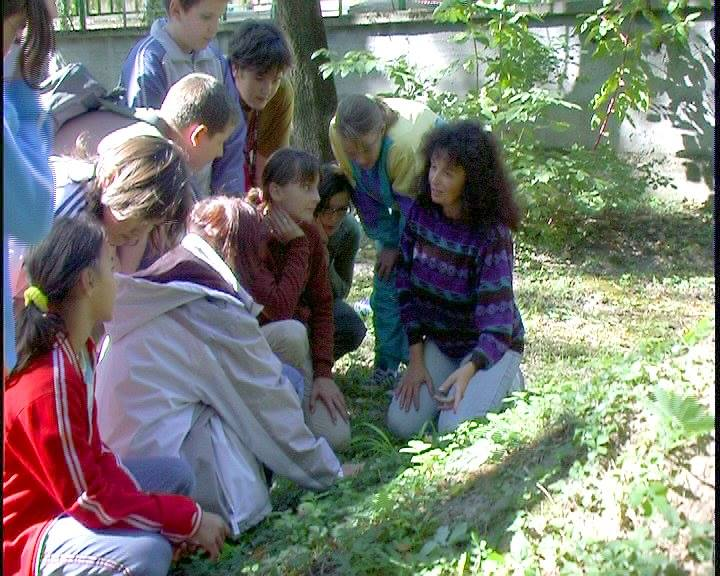 Bácsalmási Zöldikék csoporttal a Kossuth parkban