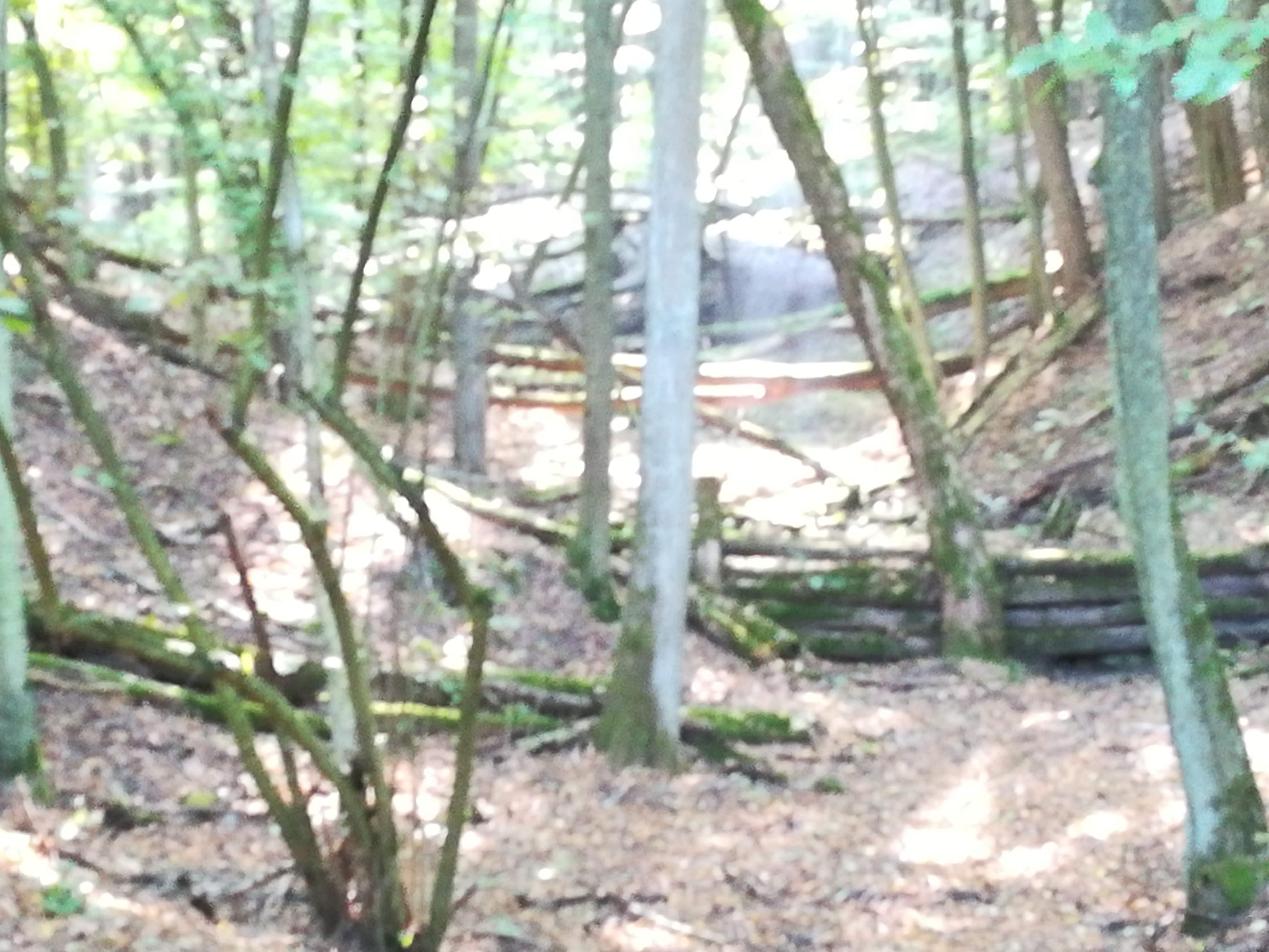 A Páris patak által kivájt szurdokvölgy Nógrádszakálnál