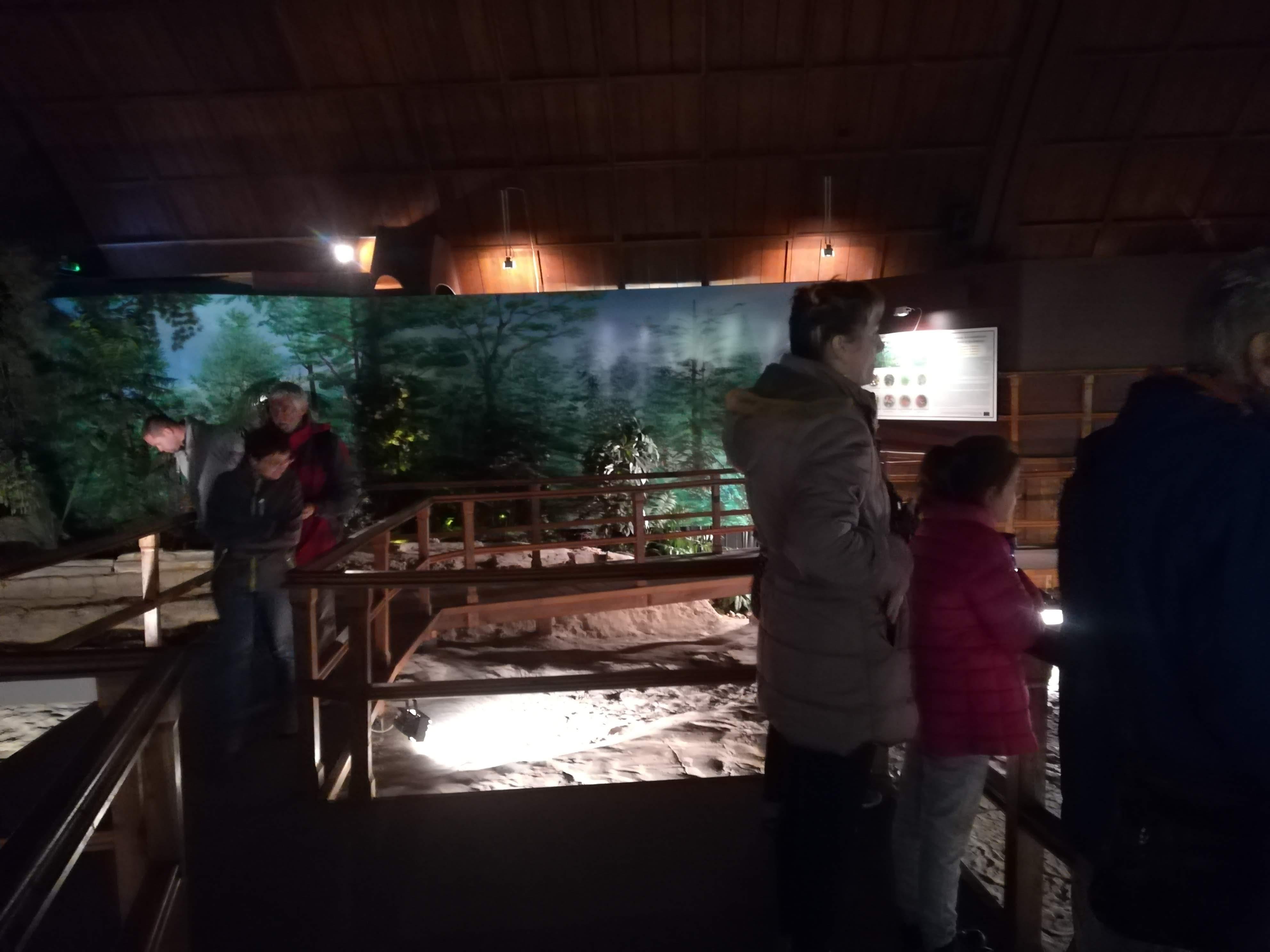 Ipolytarnóci Ősmaradványok Természetvédelmi Terület látogatása