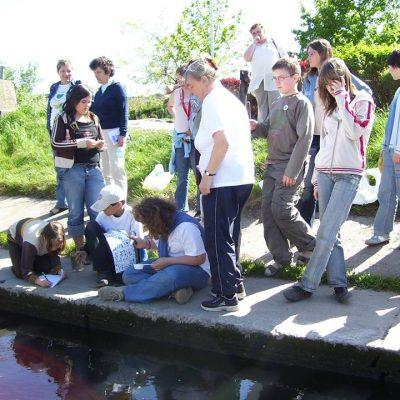 Soroksár, vízvizsgálat, 2007